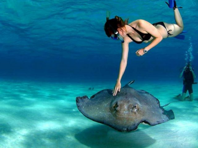 Actividades acuaticas por las aguas de Lanzarote