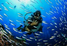 Buceo Lanzarote