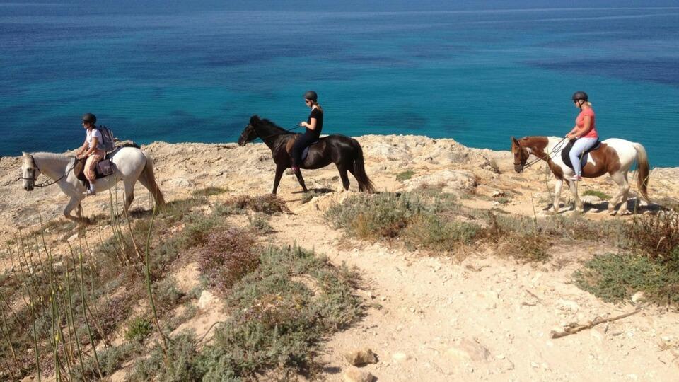 Caballos Lanzarote