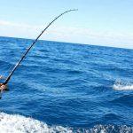 Acitividades y pesca deportiva en Lanzarote