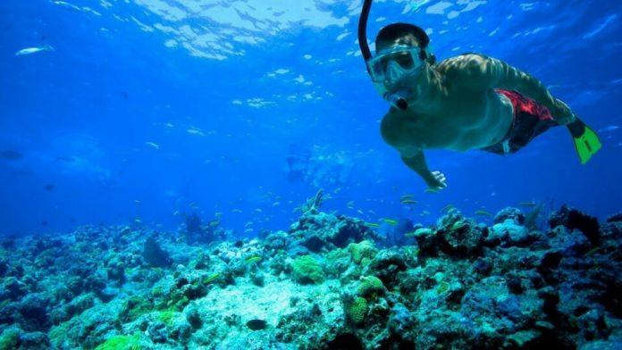 Snorkel Lanzarote